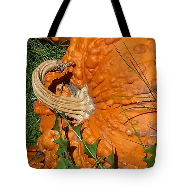Tote Bag featuring the photograph Bumpy And Beautiful by Caryl J Bohn