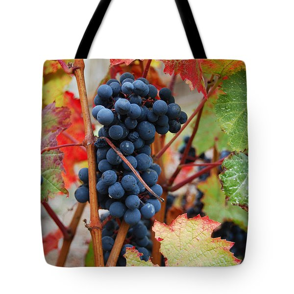 Bunch Of Grapes Tote Bag by Jani Freimann
