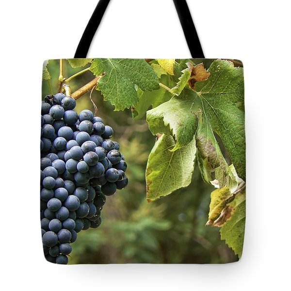 Bunch Of Grapes Tote Bag by Paulo Goncalves