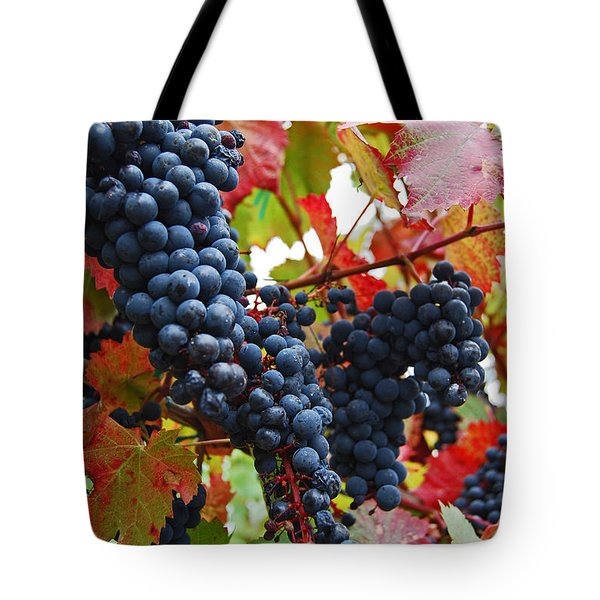 Bunches Of Grapes Tote Bag by Jani Freimann