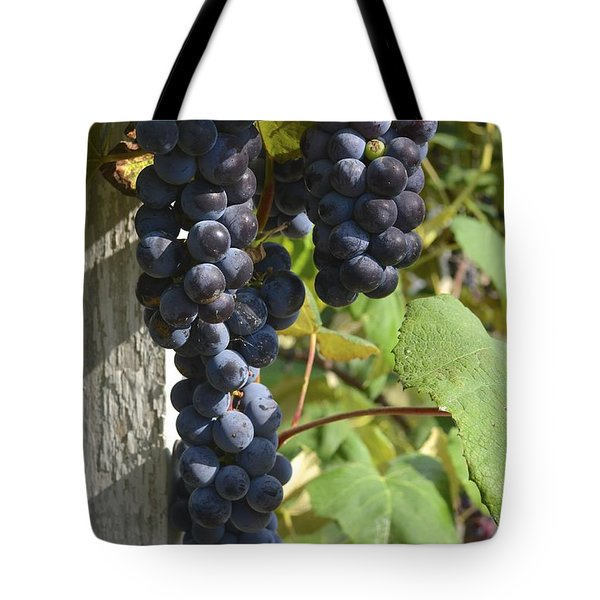 Bunches Of Grapes Tote Bag