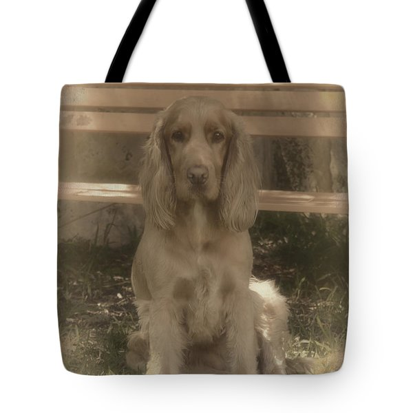 Tote Bag featuring the photograph Bundy by Elaine Teague