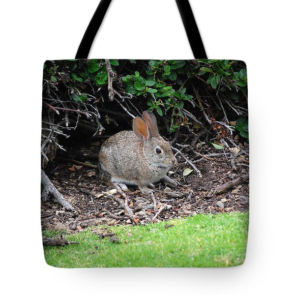 Tote Bag featuring the photograph Bunny In Bush by Debra Thompson