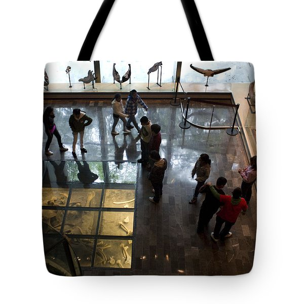 Buried Treasures Tote Bag by Lynn Palmer