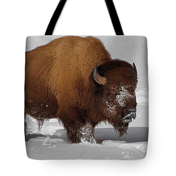 Burly Bison Tote Bag by Priscilla Burgers
