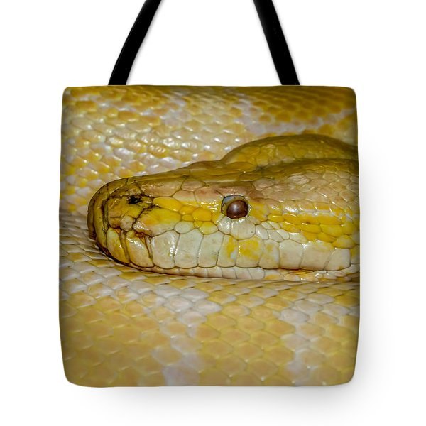 Burmese Python Tote Bag by Ernie Echols