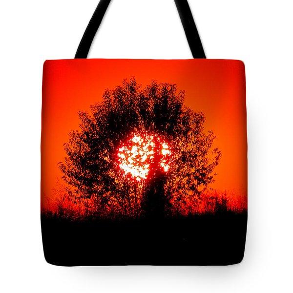 Burning Bush Tote Bag by Nick Kirby