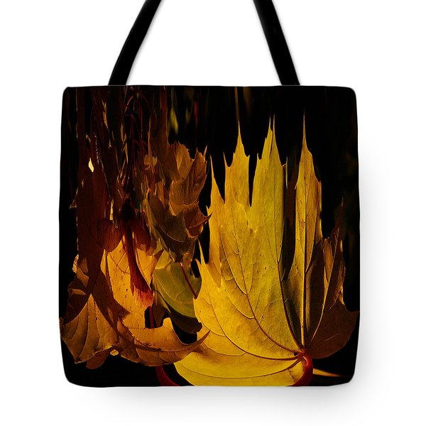 Burning Fall Tote Bag by Jouko Lehto