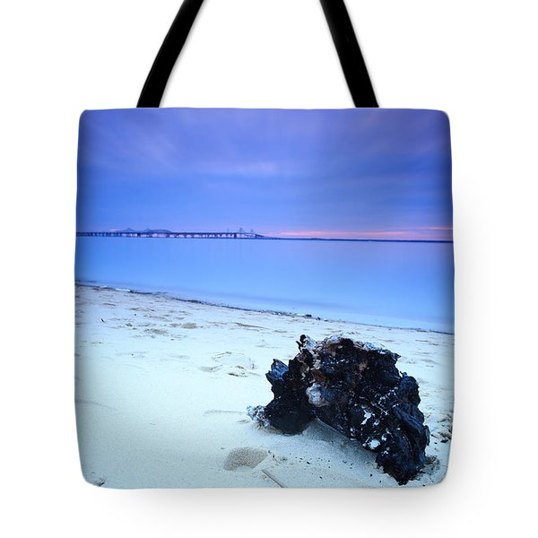 Tote Bag featuring the photograph Burnt Driftwood Sunset by Jennifer Casey