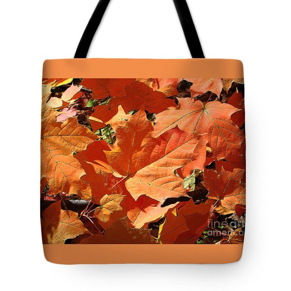 Burnt Orange Tote Bag by Ann Horn