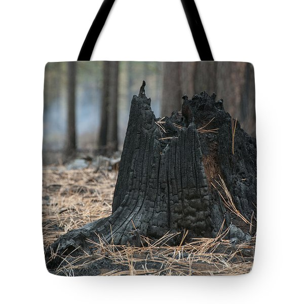 Burnt Tree Trunk Tote Bag by Juli Scalzi