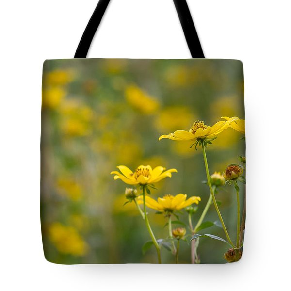 Tote Bag featuring the photograph Burrmarigold by Paul Rebmann