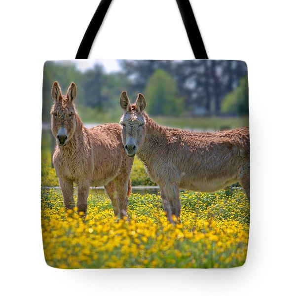 Burros In The Buttercups Tote Bag