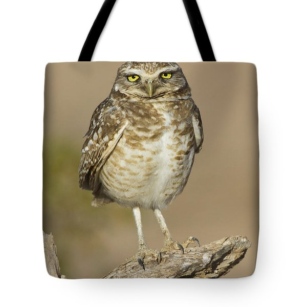 Tote Bag featuring the photograph Burrowing Owl by Bryan Keil