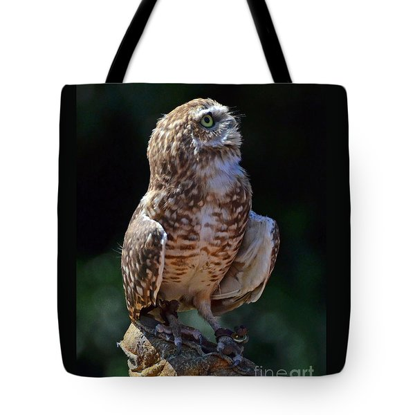 Tote Bag featuring the photograph Burrowing Owl by Debby Pueschel