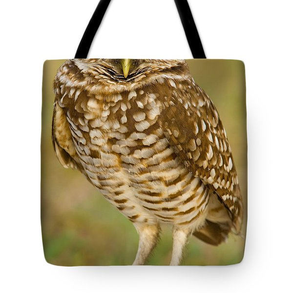Burrowing Owl Tote Bag by Jerry Fornarotto
