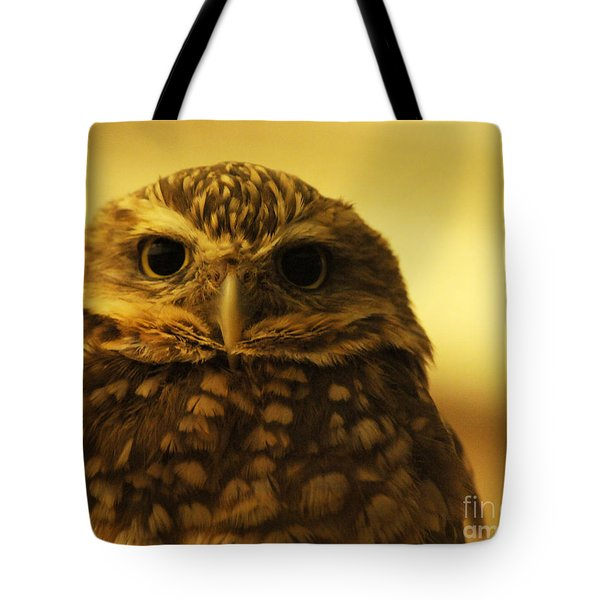 Tote Bag featuring the photograph Burrowing Owl by Olivia Hardwicke
