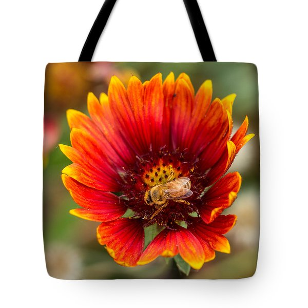 Burst Of Color Tote Bag by Kathleen Scanlan