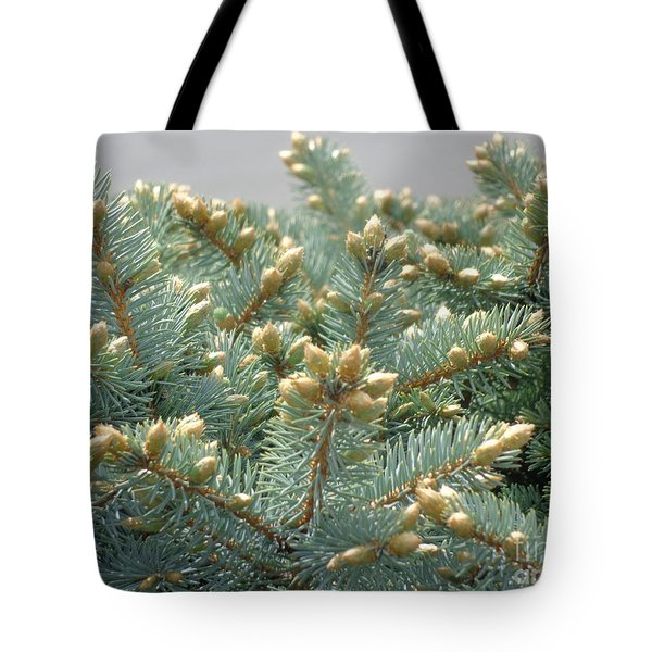 Bush Mountain Crest Tote Bag by Christina Verdgeline