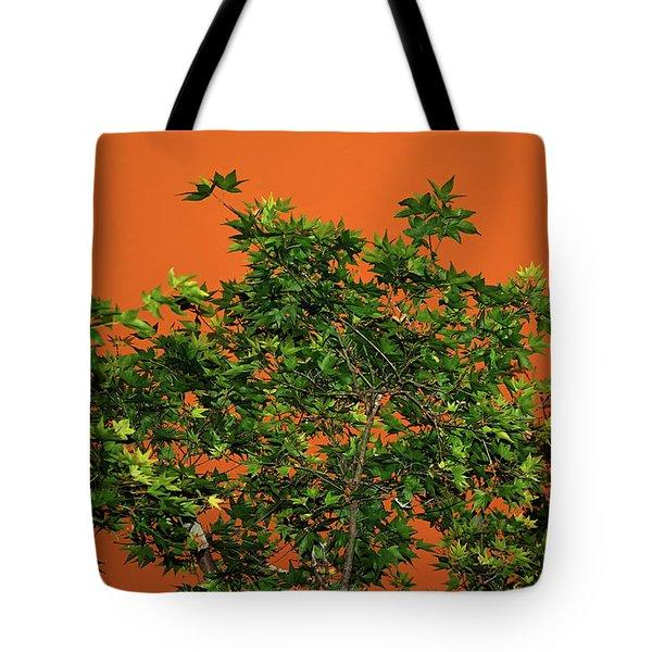 Bushfire Skies Tote Bag by Kaye Menner