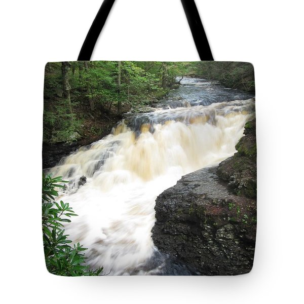 Tote Bag featuring the photograph Bushkill Rapids by Richard Reeve