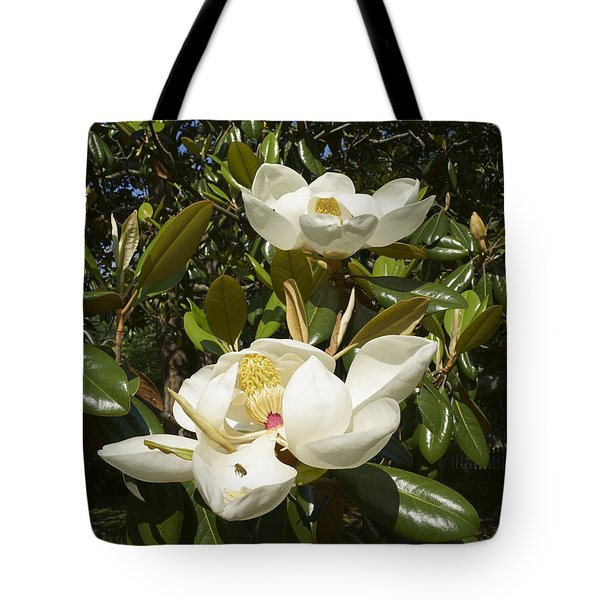 Busy Bee In A Magnolia Blossom 2 Tote Bag