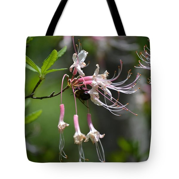 Tote Bag featuring the photograph Busy Bee by Tara Potts