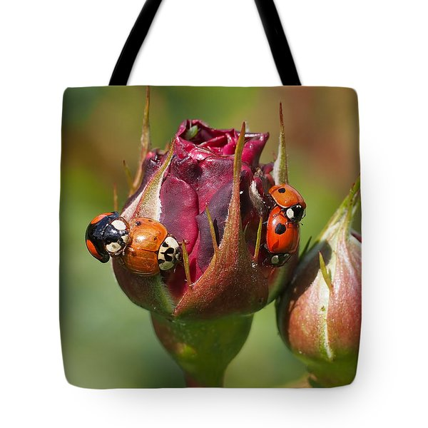 Busy Ladybugs Tote Bag