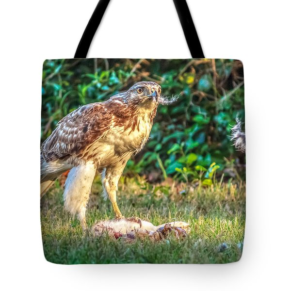 Tote Bag featuring the photograph Buteo Jamaicensis by Rob Sellers