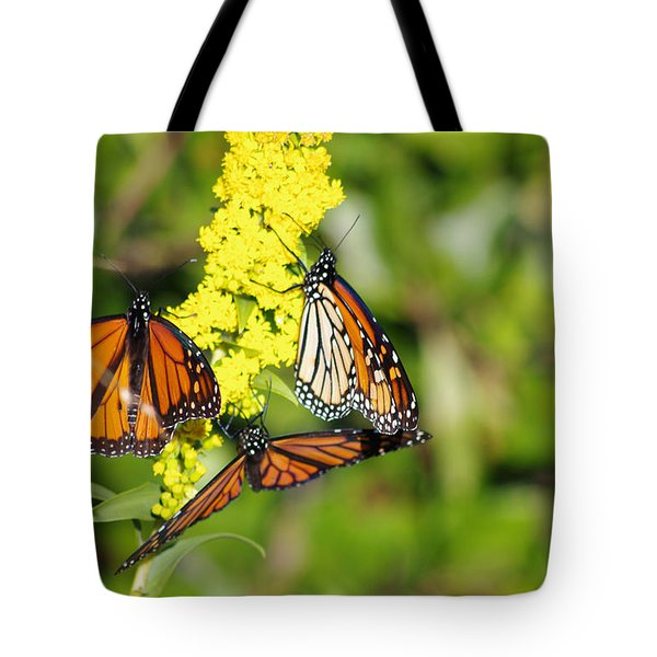 Butterflies Abound Tote Bag by Greg Graham