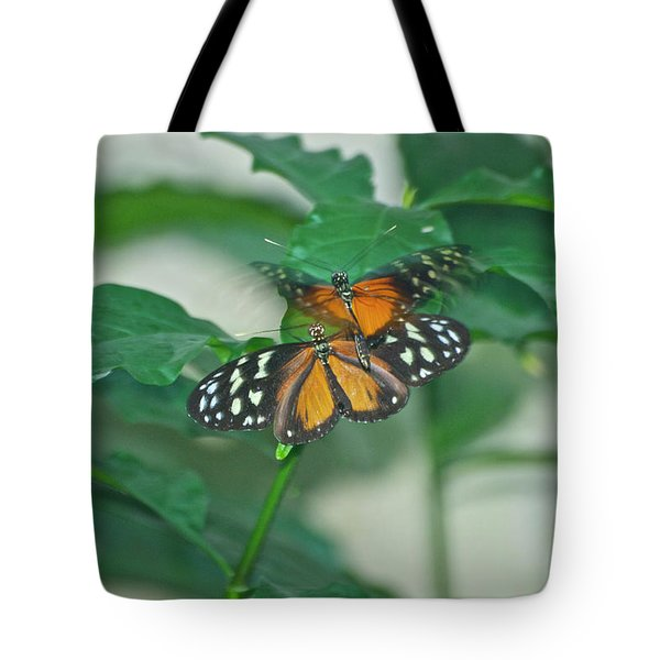 Tote Bag featuring the photograph Butterflies Gentle Touch by Thomas Woolworth