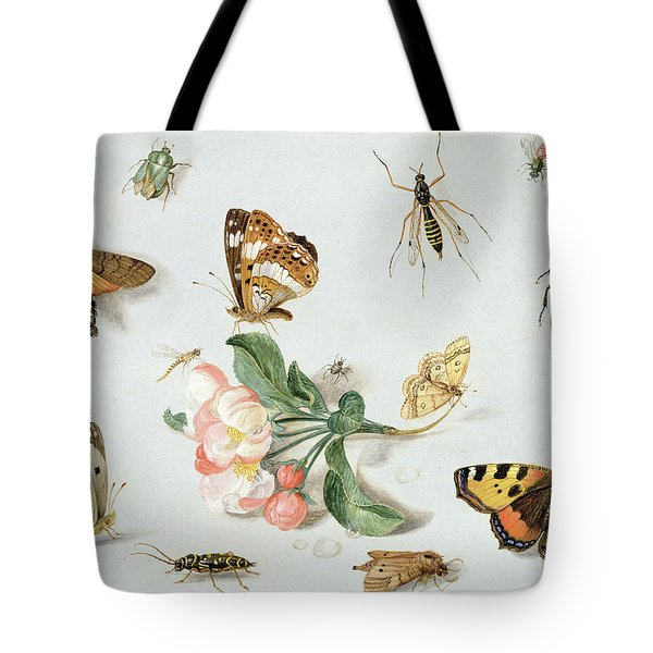 Butterflies Moths And Other Insects With A Sprig Of Apple Blossom Tote Bag by Jan Van Kessel