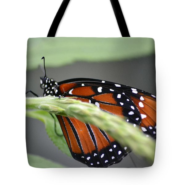 Tote Bag featuring the photograph Butterfly 1 by Michael Colgate