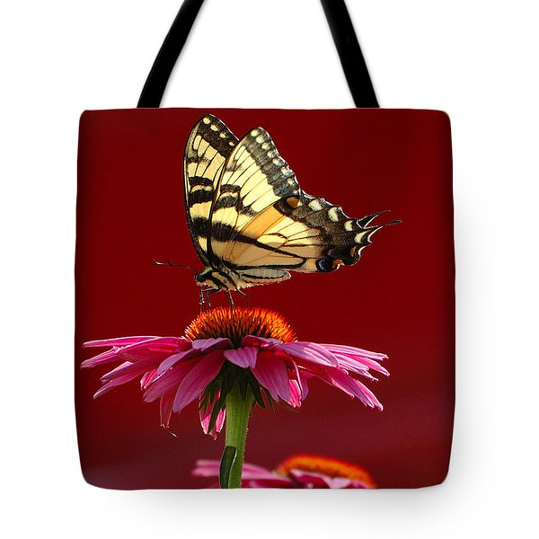 Butterfly 2 2013 Tote Bag