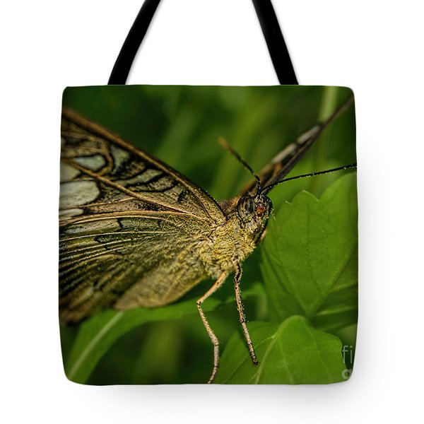 Tote Bag featuring the photograph Butterfly 2 by Olga Hamilton