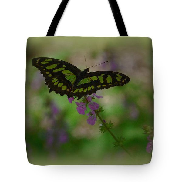 Tote Bag featuring the photograph Butterfly 4 by Leticia Latocki