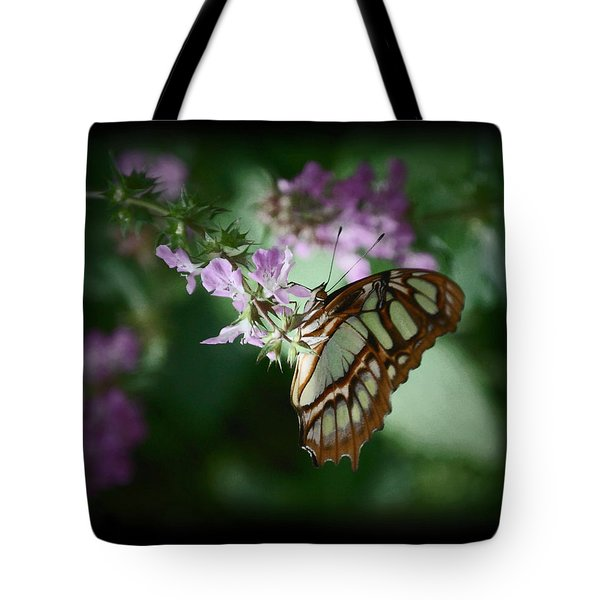 Tote Bag featuring the photograph Butterfly 7 by Leticia Latocki