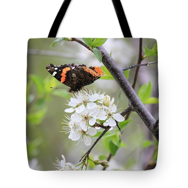 Tote Bag featuring the photograph Butterfly And Apple Blossoms by Penny Meyers