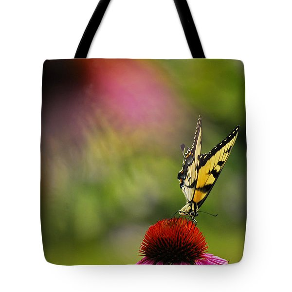 Butterfly And Cone Flower Tote Bag