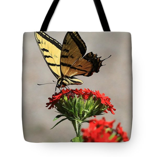 Tote Bag featuring the photograph Butterfly And Maltese Cross 1 by Aaron Aldrich