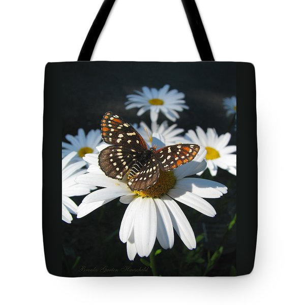 Butterfly And Shasta Daisy - Nature Photography Tote Bag