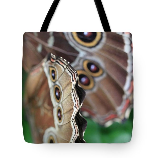 Butterfly Close Up  Tote Bag by AR Annahita