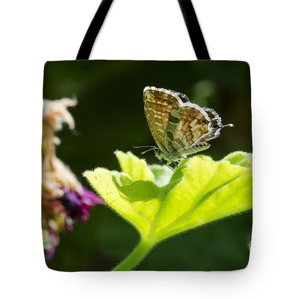 Butterfly Tote Bag by Giovanni Chianese