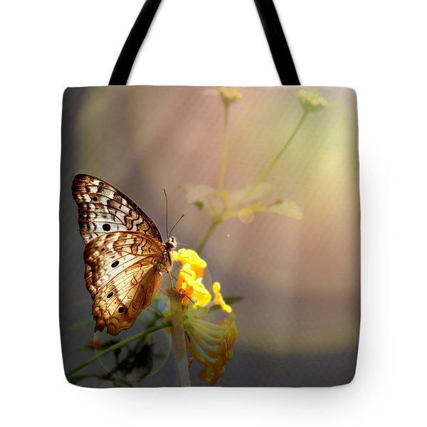 Butterfly Glow Tote Bag by Judy Vincent