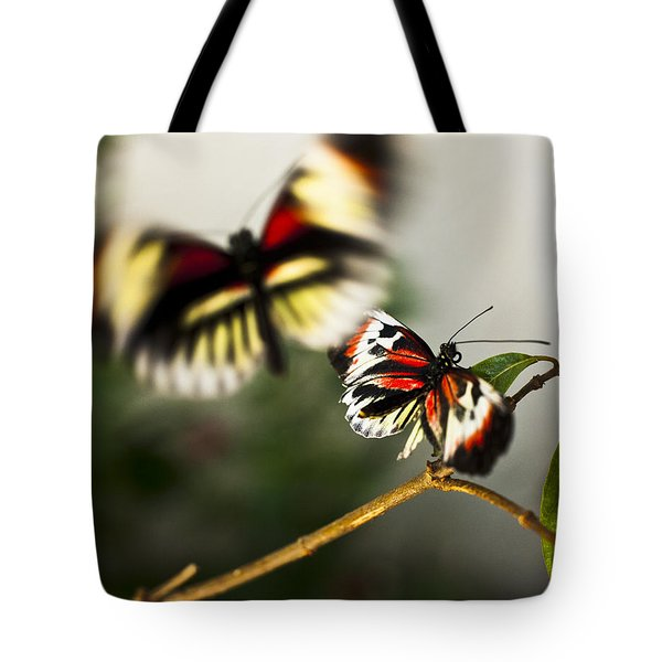 Butterfly In Flight Tote Bag by Bradley R Youngberg