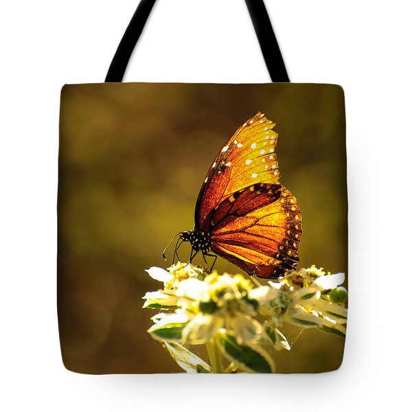 Butterfly In Sun Tote Bag