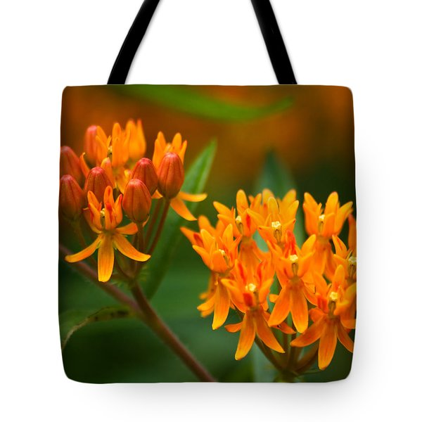 Butterfly Milkweed Tote Bag by Adam Romanowicz