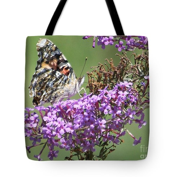 Tote Bag featuring the photograph Painted Lady Butterfly by Eunice Miller