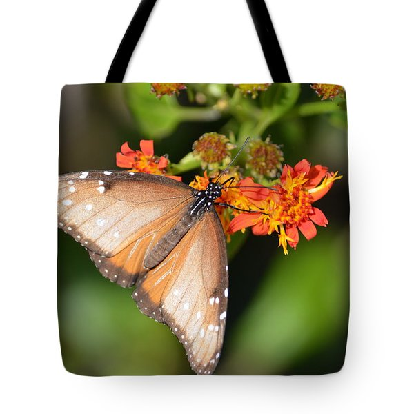 Butterfly On Mexican Flame Tote Bag by Debra Martz