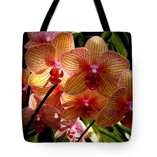 Tote Bag featuring the photograph Butterfly Orchids by Rodney Lee Williams